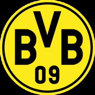 Borussia Dortmund BVB 09 nálepka 5x5 cm - SKLADOM empty 057612d9aeb